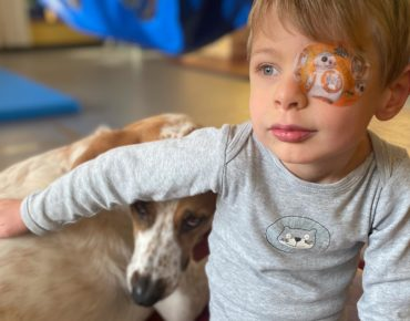 Begleit- und Therapiehund Karlson